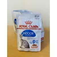 Royal Canin Indoor Sterilised in Gravy täissööt kastmes sisseruumides elavatele kassidele, 12x85g