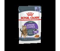 Royal Canin Cat Appetite Control Jelly täisväärtuslik toit täiskasvanud kassidele zelees, 12x85g