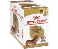 Royal Canin Dachshund Adult pasteet Taksa koertele, 12x85 g