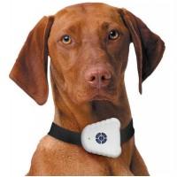 Haukumisvastased tarbed, GPS seadmed