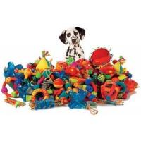Koerte mänguasjad
