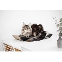 Pesad ja asemed kassile