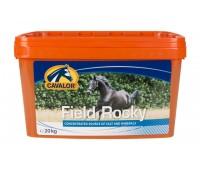 Cavalor hobuse lakukivi koplisse field rocky 20kg