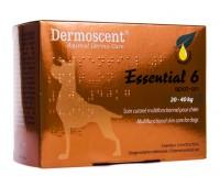 Dermoscent essential6 spot-on dog 20-40kg 2,4ml n4