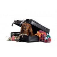 Transpordipuurid ja kandekotid koertele